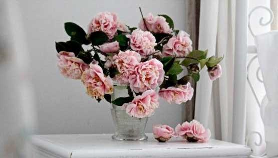 Rams-flors-fresques