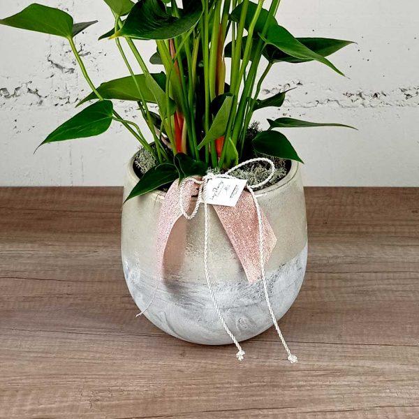 anturium-ceramica-sant-valenti-planta-floristeria-les-flors-igualada-comprar-online