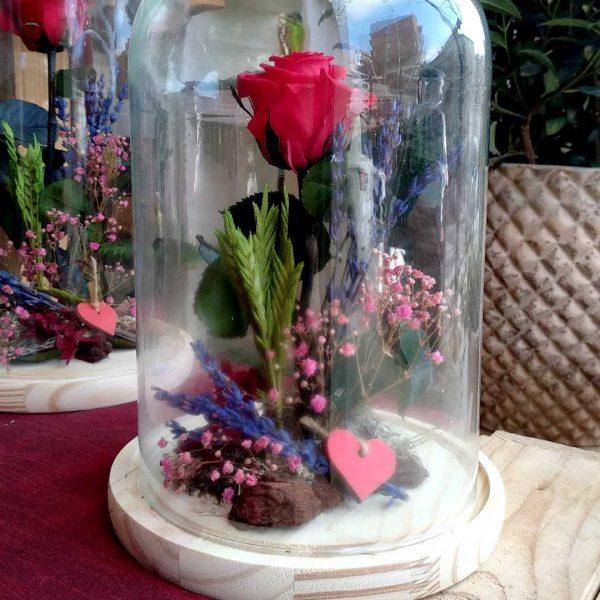 rosa-roja-preservada-cupula-floristeria-les-flors-igualada