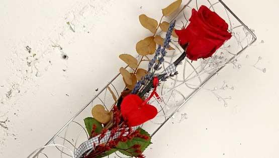 sant-jordi-23-abril-les-flors-igualada