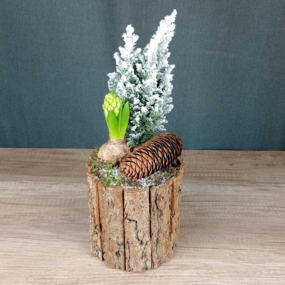 avet-jacint-pinyes-fusta-plantes-floristeria-les-flors-igualada