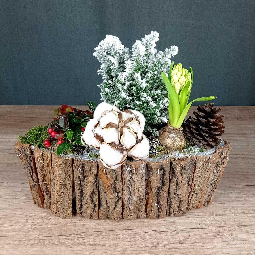gauteria-avet-jacint-pinyes-fusta-plantes-floristeria-les-flors-igualada