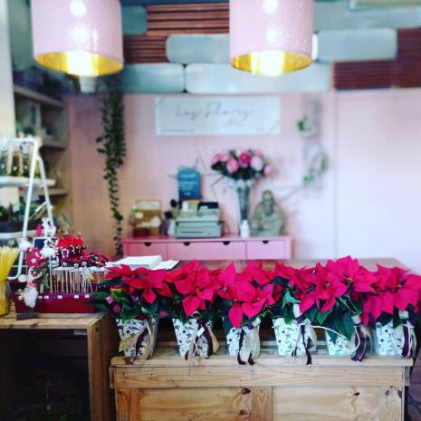flos-nadal-botiga-les-flors