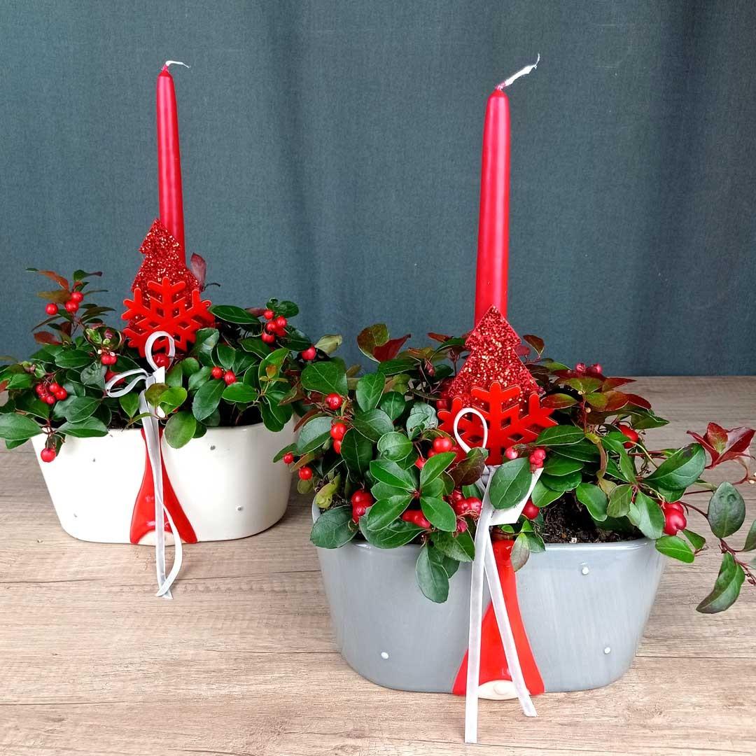 gauteries-ceramica-planta-floristeria-les-flors-igualada